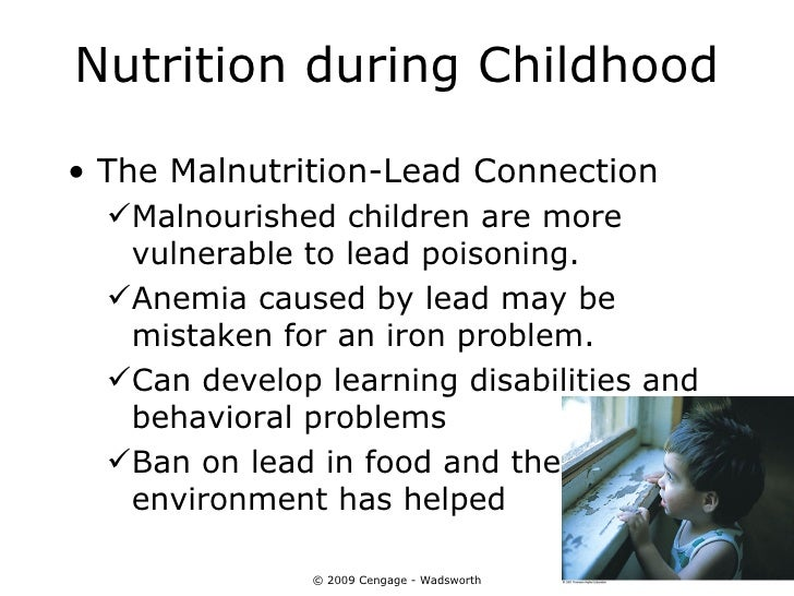Nutrition during Childhood• The Malnutrition-Lead Connection  Malnourished children are more   vulnerable to lead poisoni...