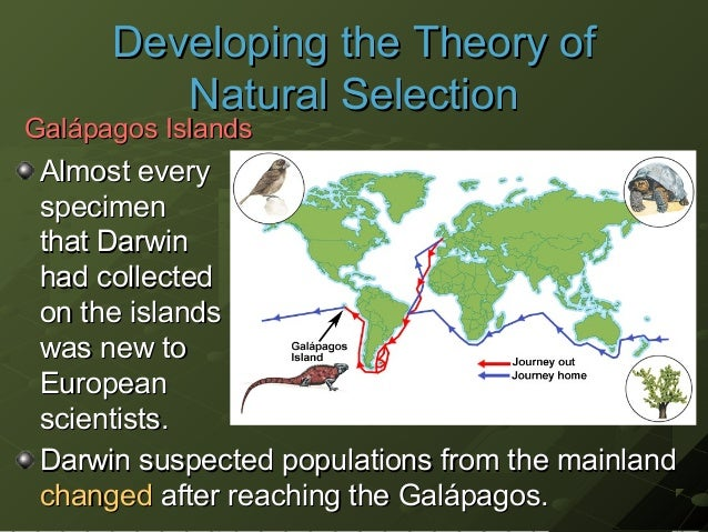 on darwins theory of natural selection A look at natural selection in action, including darwin's finches and industrial melanism.