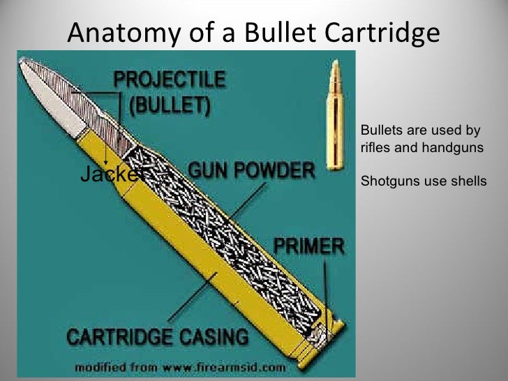 Anatomy Of A Bullet 9198888 Follow4morefo