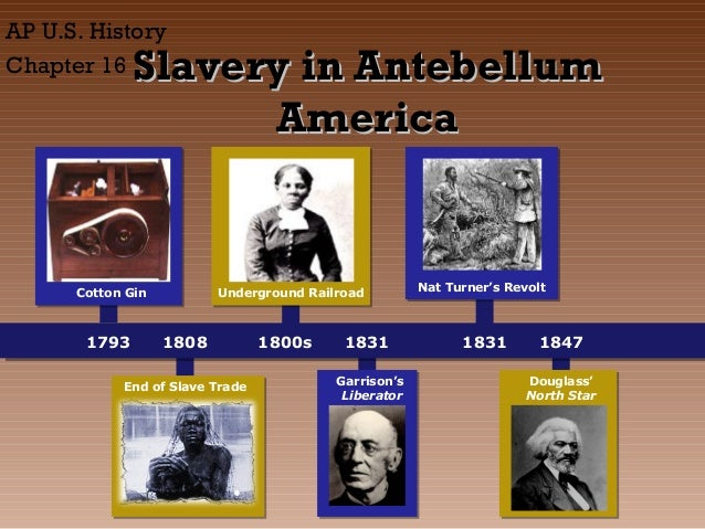 AP U.S. History Chapter 16  Slavery in Antebellum America  Cotton Gin  1793  Underground Railroad  1808  End of Slave Trad...