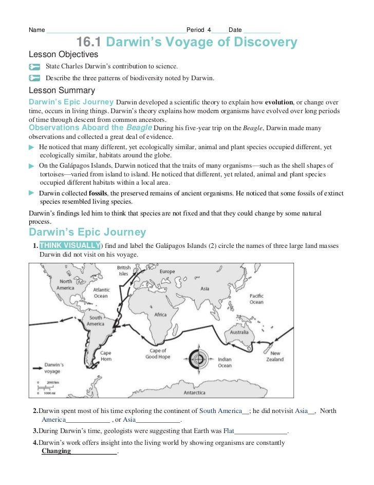 Pictures Pearson Education Worksheet Answers - Toribeedesign