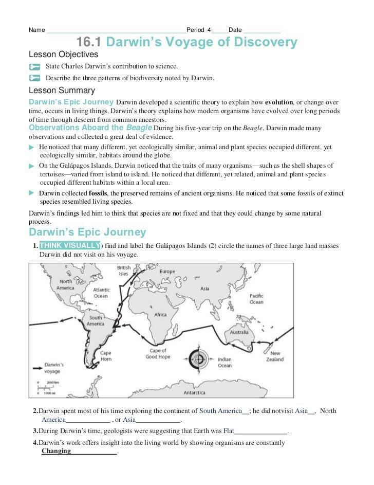 Natural Selection Worksheet | Homeschooldressage.com