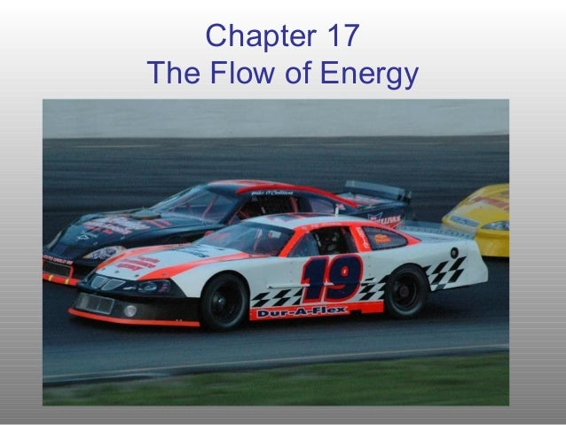 Chapter 17The Flow of Energy