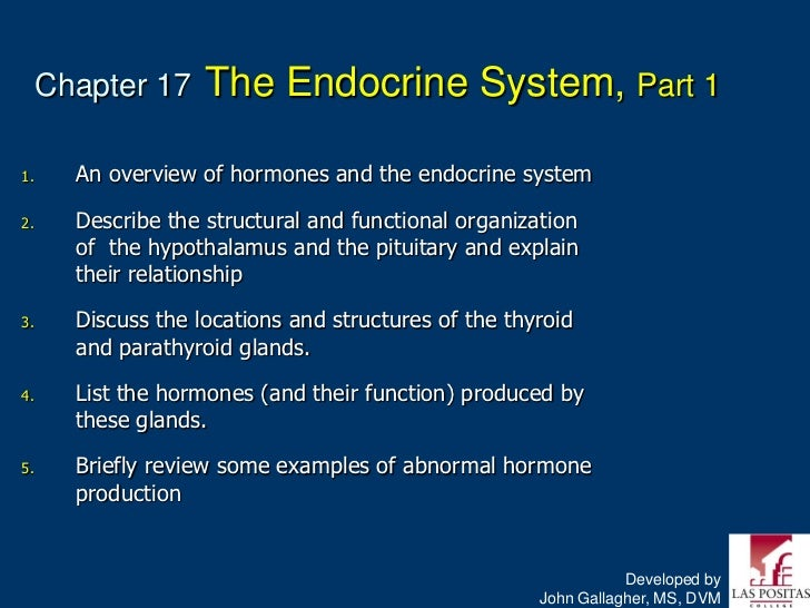 Chapter 17     The Endocrine System, Part 11.     An overview of hormones and the endocrine system2.     Describe the stru...
