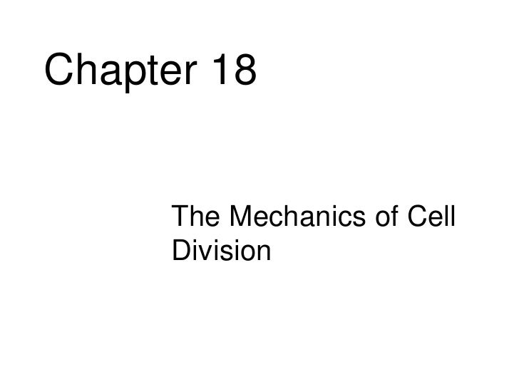 Chapter 18     • The Mechanics of Cell       Division