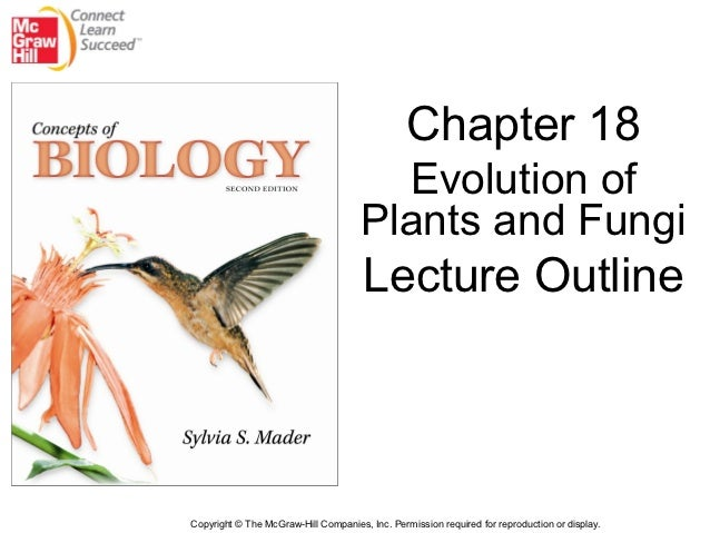 Chapter 18                                        Evolution of                                      Plants and Fungi      ...