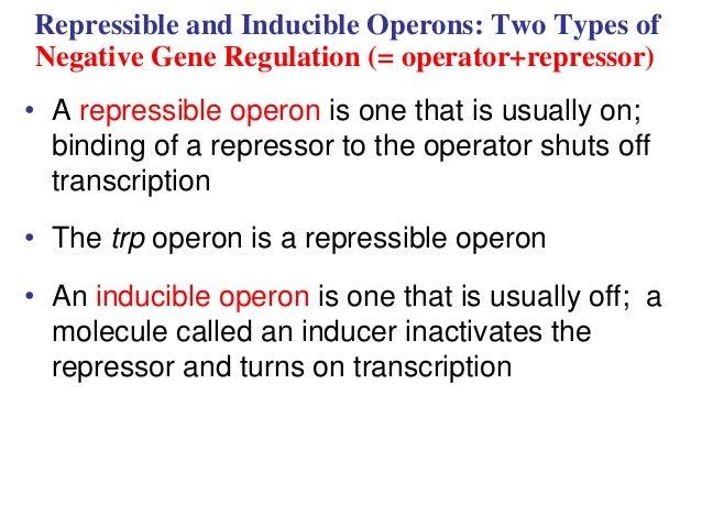 inducible operon definition