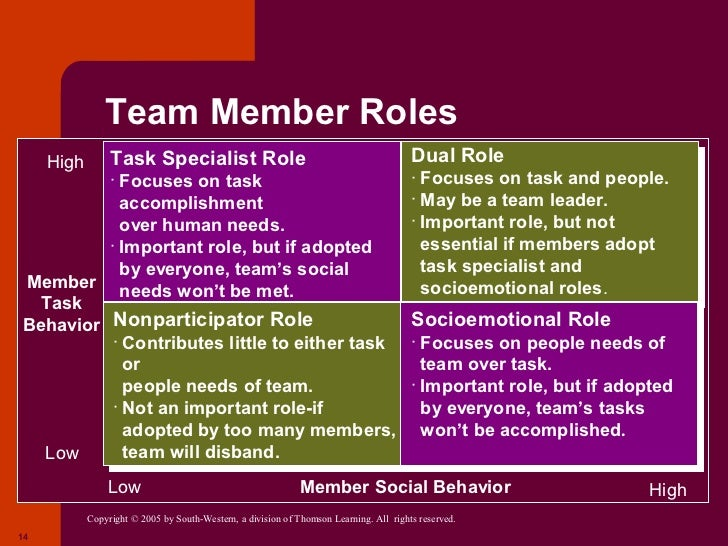 task specialist and socio emotional role of a team member Roles and responsibilities for group members roles and during meetings you ensure that participants are working on the task at generic role: it specialist.