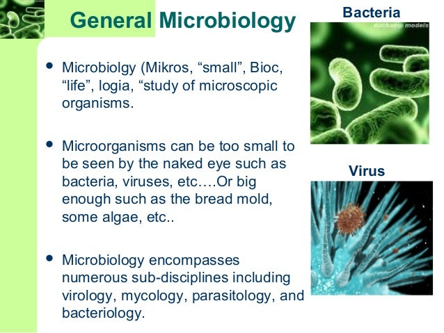 chapter 1 studyguide microbiology a systems Fundamentals of microbiology: body systems edition takes a global perspective on microbiology and part 1 foundations of microbiology chapter 1 microbiology: (2016), as well as encounters in microbiology, vol 1 and 2 (2009), and guide to infectious diseases by body system, second.
