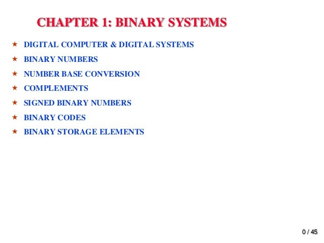 Electronic Mapping System - Chapter1 Essay