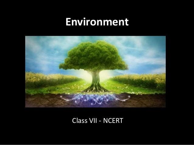 Environment Class VII - NCERT