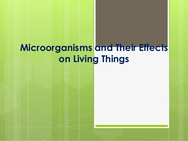 Microorganisms and Their Effects on Living Things