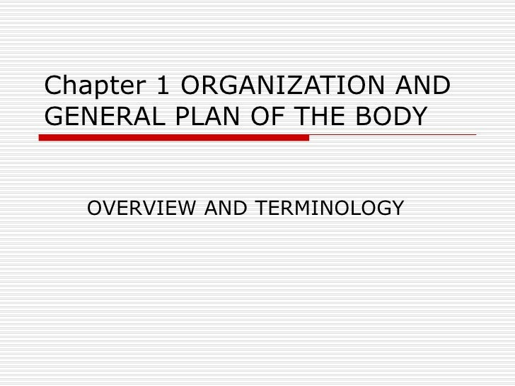 Chapter 1--Organization and General Plan of the Body