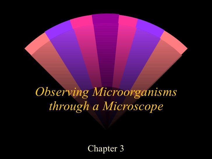 Observing Microorganisms through a Microscope Chapter 3