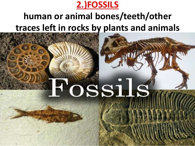 What Are 2 Ways Of Dating Fossils