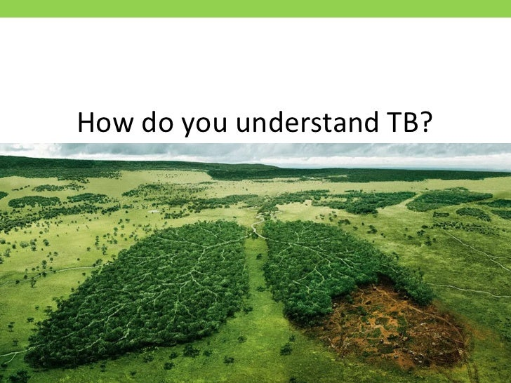 How do you understand TB?<br />