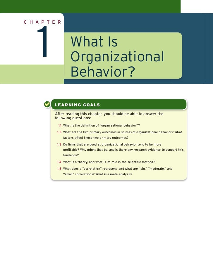 what is organizational behavior Organizational behavior is the study of both group and individual performance and activity within an organization internal and external perspectives are two theories of how organizational behavior can be viewed by companies.