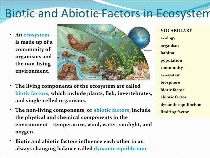 Science 10 Chapter2 – Abiotic and Biotic Factors Worksheet