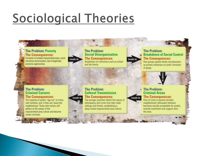discuss theories of crime The sociological approach to crime and correction danin giasr -the approach to crime which is distinctively sociological assumes that the.