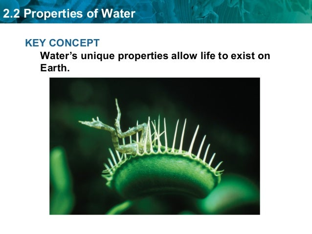 properties of life on earth Harvard university in partnership with the university of nebraska state museum, northwestern university, and university of michigan developed life on earth.