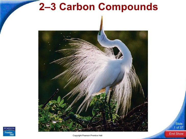 2–3 Carbon Compounds Copyright Pearson Prentice Hall