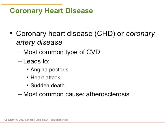 Chapter 21 Nutrition and Cardiovascular Diseases