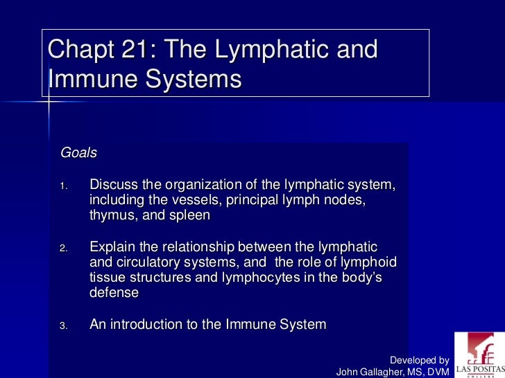 Chapt 21: The Lymphatic andImmune Systems Goals 1.   Discuss the organization of the lymphatic system,      including the ...