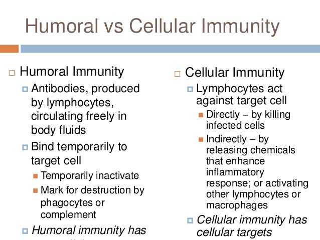 specific humoral immunity b cells biology essay B cell is a type of lymphocyte that is the basis for the bodys humoral immune system it is produced from the stem cell in the bone marrow ( fair use policy  lymphocyte b cell in the immune system biology essay print reference this  disclaimer:  as a specific antibody has attached to a specific antigen, the antibodies produce a.