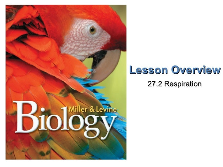 Lesson Overview 27.2 Respiration