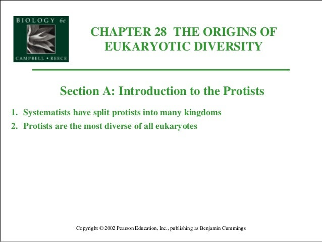 CHAPTER 28 THE ORIGINS OF EUKARYOTIC DIVERSITY Copyright © 2002 Pearson Education, Inc., publishing as Benjamin Cummings S...