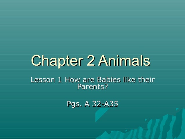 Chapter 2 AnimalsChapter 2 Animals Lesson 1 How are Babies like theirLesson 1 How are Babies like their Parents?Parents? P...