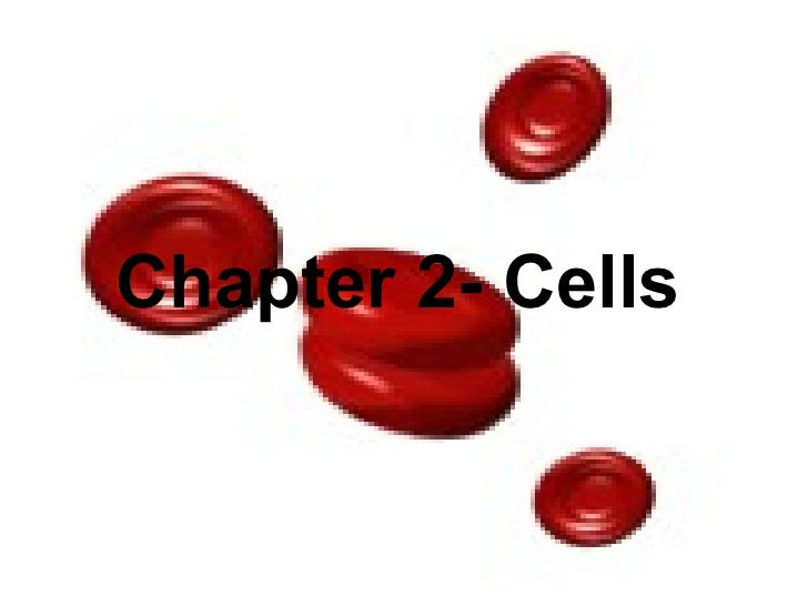 Chapter 2: Cells Chapter 2- Cells