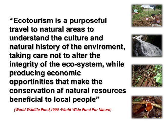"""""""Ecotourism is environmentally responsible travel to relatively undisturbed natural areas in order to enjoy and appreciate..."""