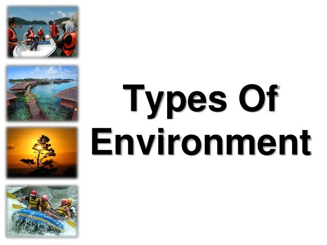 Types Of Environment
