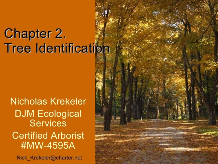 Nicholas Krekeler DJM Ecological Services Certified Arborist #MW-4595A Chapter 2. Tree Identification  [email_address]