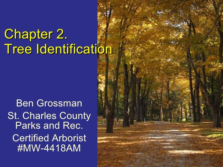 Ben Grossman St. Charles County Parks and Rec. Certified Arborist #MW-4418AM Chapter 2. Tree Identification