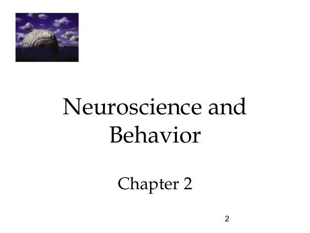 Chapter 2 Neuroscience And Behavior