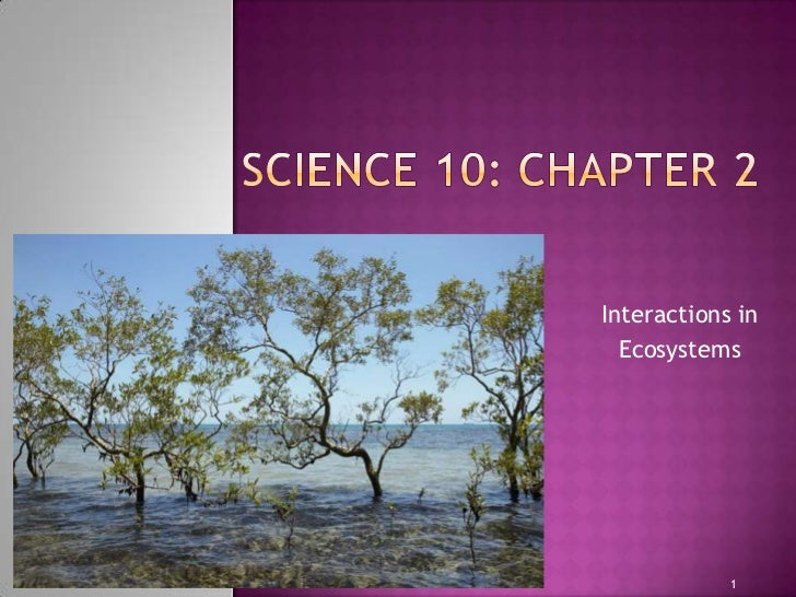 Interactions in  Ecosystems            1