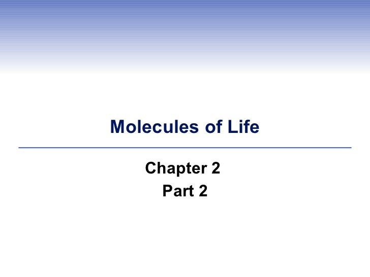 Molecules of Life Chapter 2  Part 2