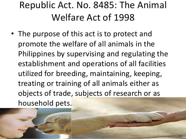 Republic Act. No. 8485: The Animal Welfare Act of 1998 • The purpose of this act is to protect and promote the welfare of ...