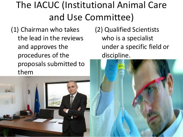 The IACUC (Institutional Animal Care and Use Committee) (1) Chairman who takes the lead in the reviews and approves the pr...
