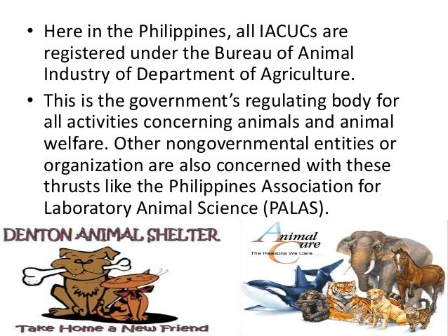 • Here in the Philippines, all IACUCs are registered under the Bureau of Animal Industry of Department of Agriculture. • T...