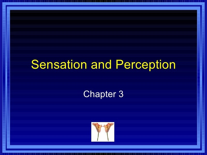 Sensation and Perception Chapter 3