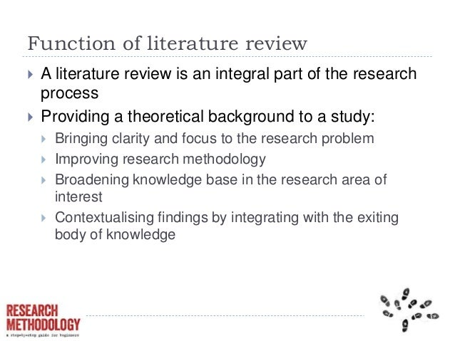functions of literature review