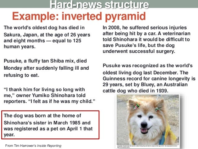 Example: inverted pyramid The world's oldest dog has died in Sakura, Japan, at the age of 26 years and eight months — equa...