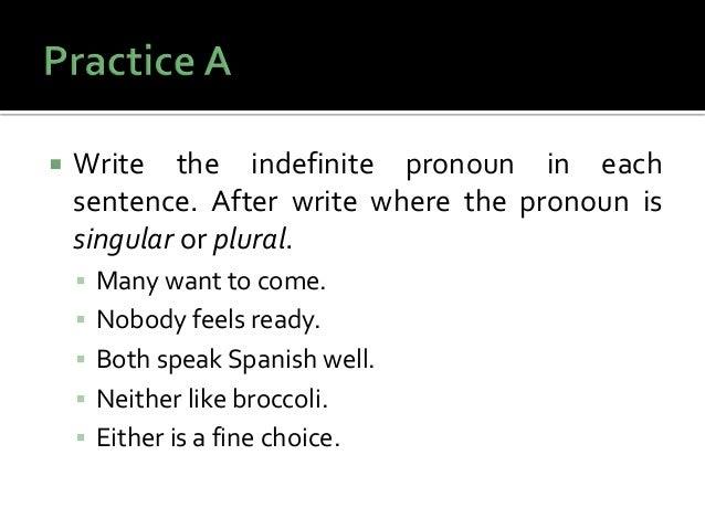write five sentences using indefinite pronouns.
