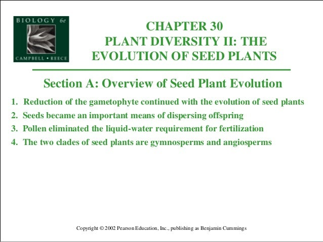 CHAPTER 30 PLANT DIVERSITY II: THE EVOLUTION OF SEED PLANTS Copyright © 2002 Pearson Education, Inc., publishing as Benjam...