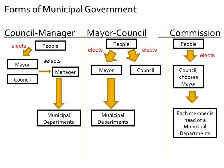 Chapter 31.1 local government