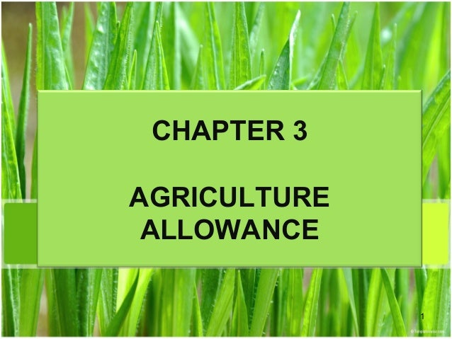 Chapter 3 agriculture allowance studnt Slide 1