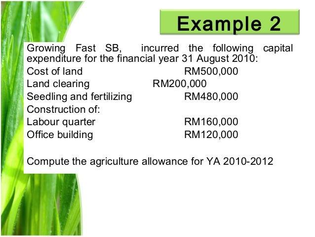 Chapter 3 agriculture allowance studnt Slide 13